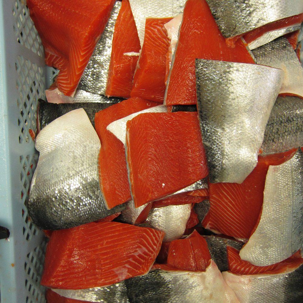 petite salmon fillets