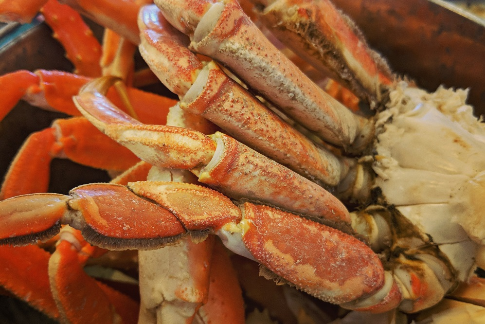 Dungeness Crab Cluster